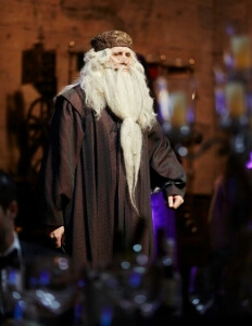 Dumbledore2._1-232x300 Themed Events Toastmaster