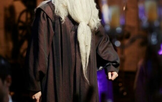 Dumbledore2._1-320x202 Gallery