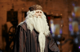 Dumbledore2555 Event Host - Not just The Man in the Red Coat